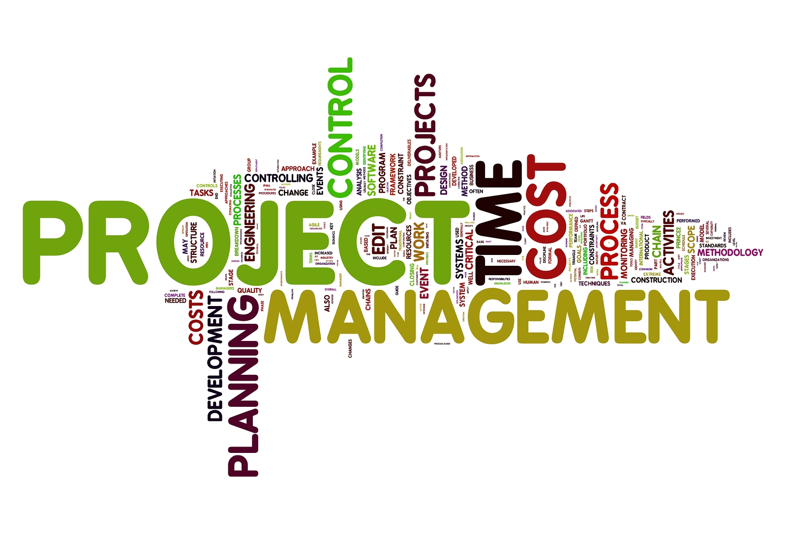 PETROLEUM PROJECT MANAGEMENT: PRINCIPLES AND PRACTICES